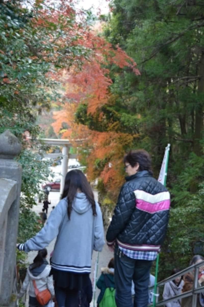 本殿と二の鳥居を結ぶ階段を包む秋の紅葉