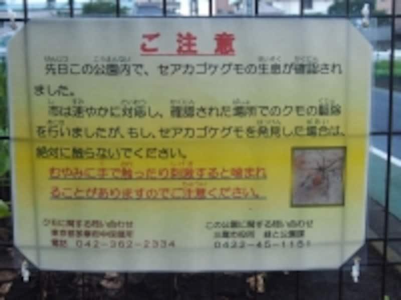 セアカゴケグモに注意の看板