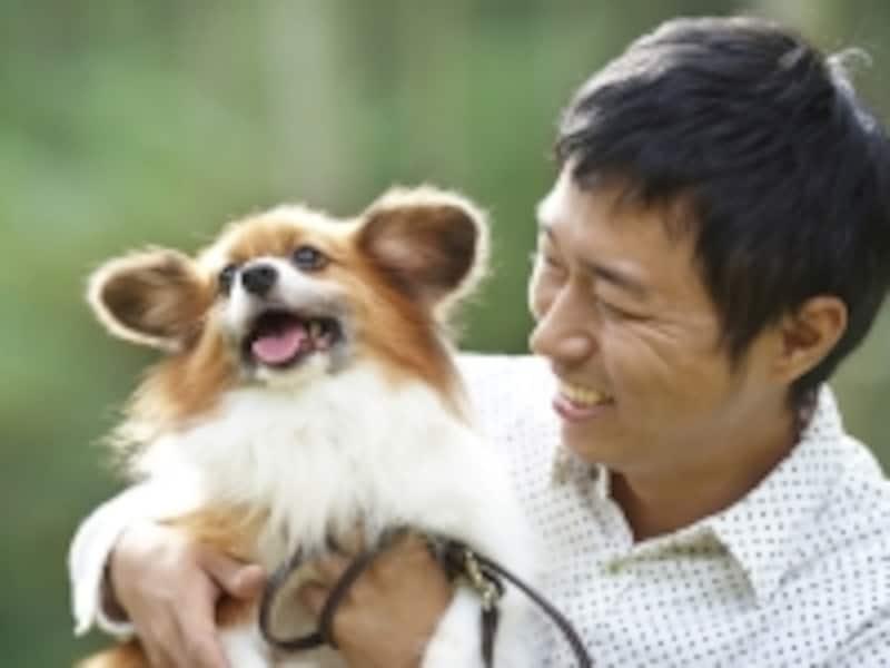 保護犬イメージ