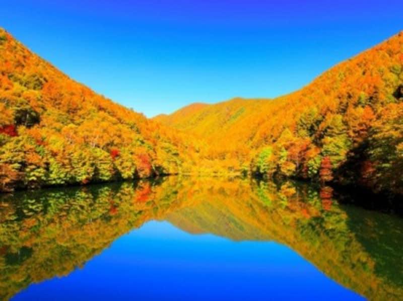 竜ヶ沢湖の紅葉