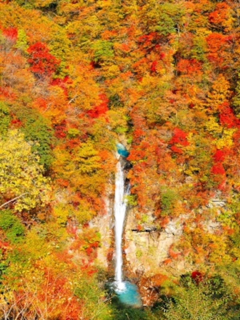 那須駒止の滝の紅葉