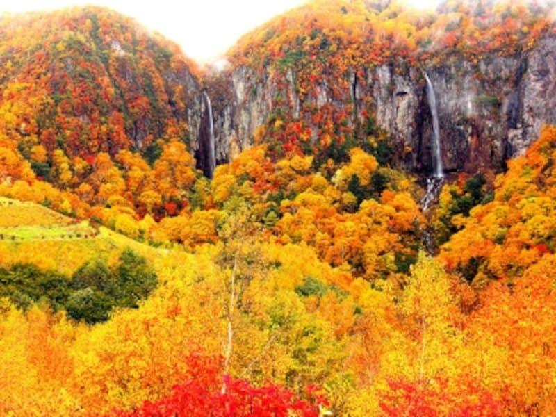 紅葉の米子大瀑布