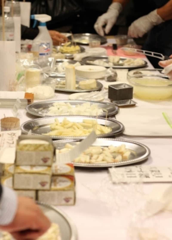 試食用に並ぶたくさんのチーズたち