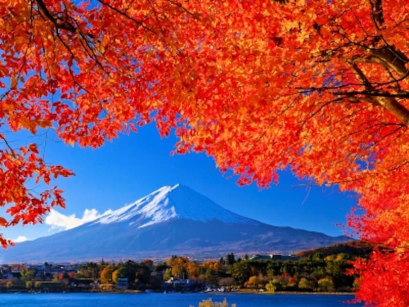 富士山と紅葉と河口湖