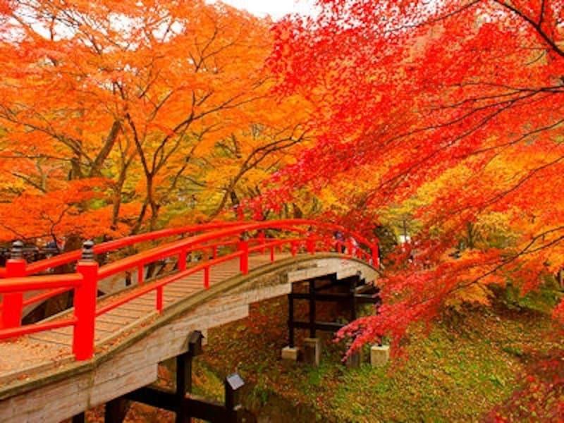 伊香保温泉河鹿橋の紅葉