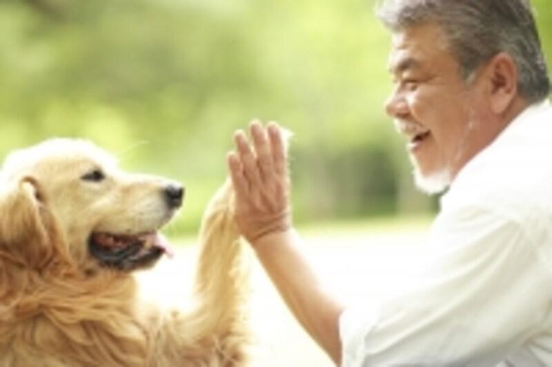 イヌと笑顔の男性