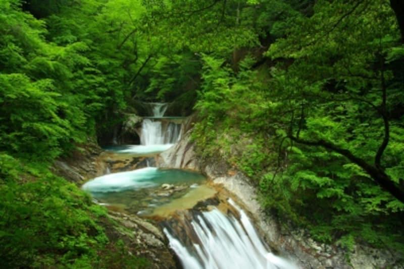 川の流れ、豊かな流れ
