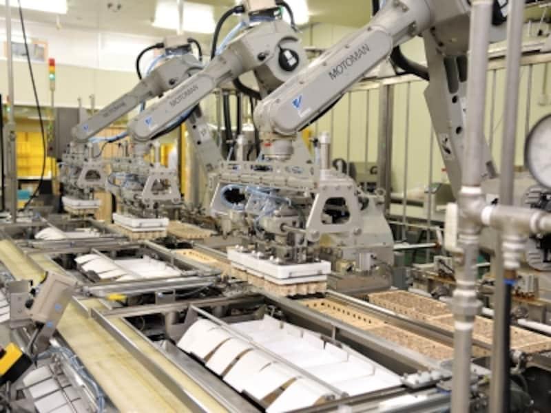 蒸しあがったシウマイを箱に詰めるロボット。アームのしなやかな動きにハマる見学者が多いとか