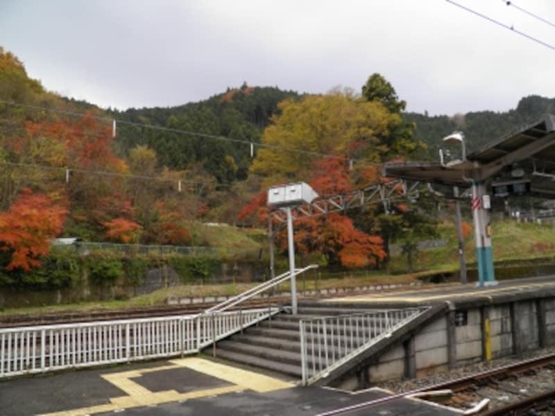 紅葉に包まれる西武吾野駅