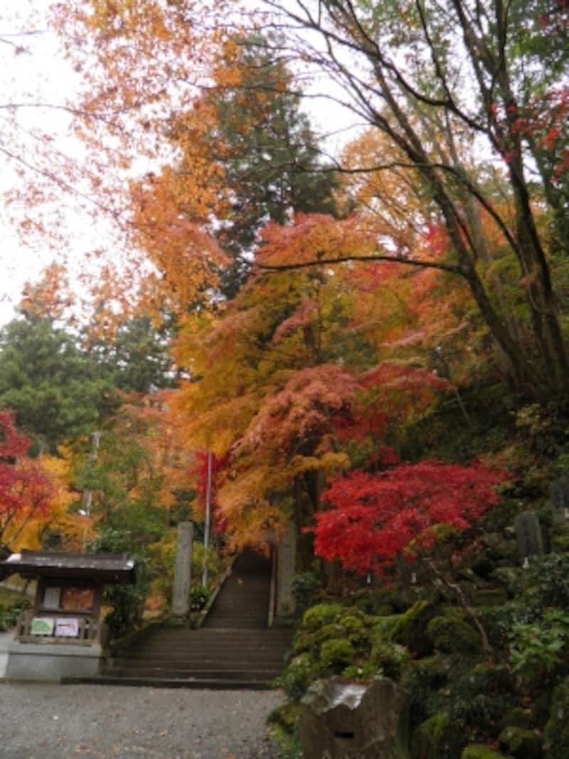 御嶽神社東郷公園の紅葉