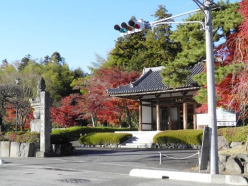 仁王像が堂々とした姿を見せる能仁寺の山門
