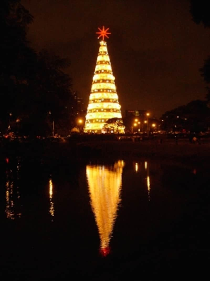 Ibirapuera christmas tree