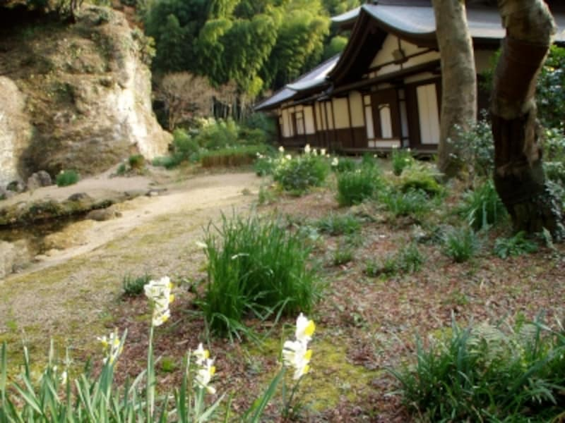 禅の心が表された瑞泉寺の庭園