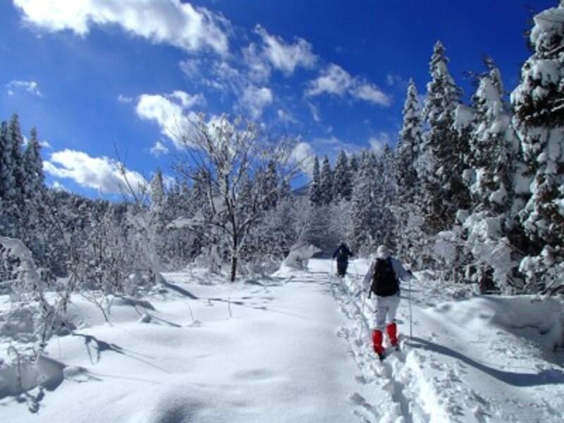 冬,アクティビティ,スキー,スノーシュー,雪,スノボ,ウィンタースポーツ,雪山,ブーツ,ニット帽,ウェア