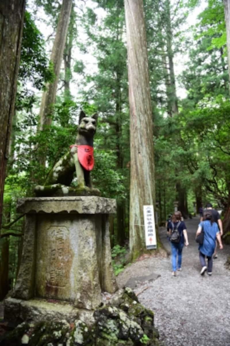境内のあちこちで見かけるオオカミ(御眷属さま)の像