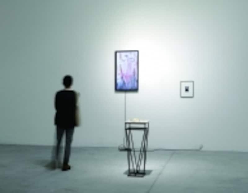 大崎のぶゆき《TraceTrip,Portraits-womanofSunYatsen》2014の展?風景撮影:川松康徳