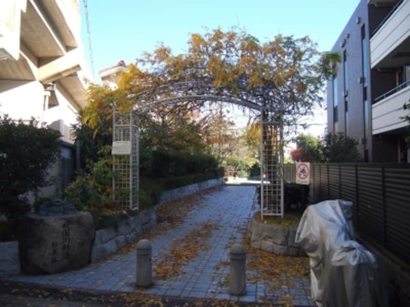 ここが杉並区側の緑道の始まり