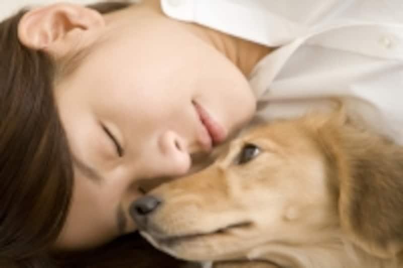 ペットと睡眠