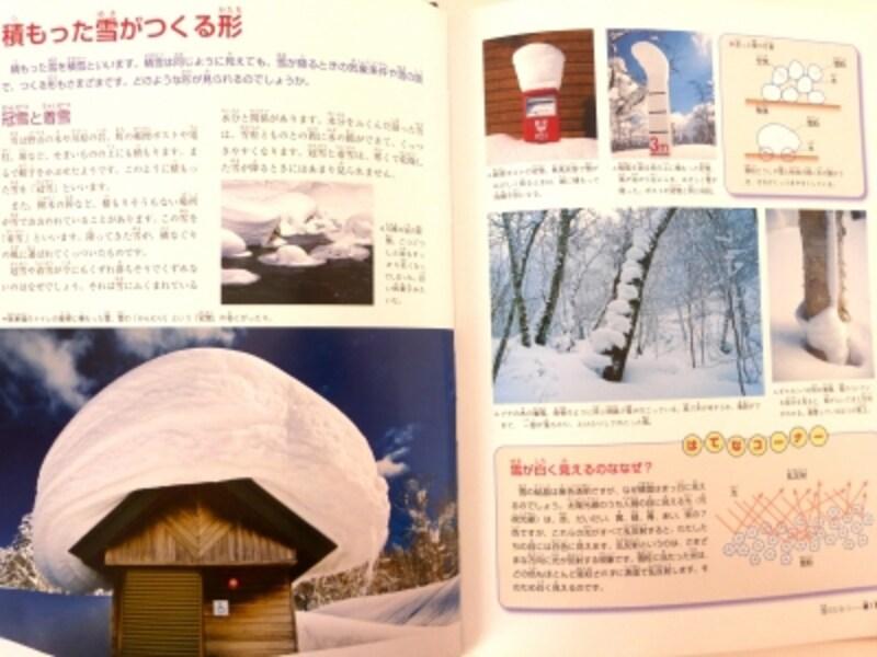 「冠雪」と「着雪」の写真