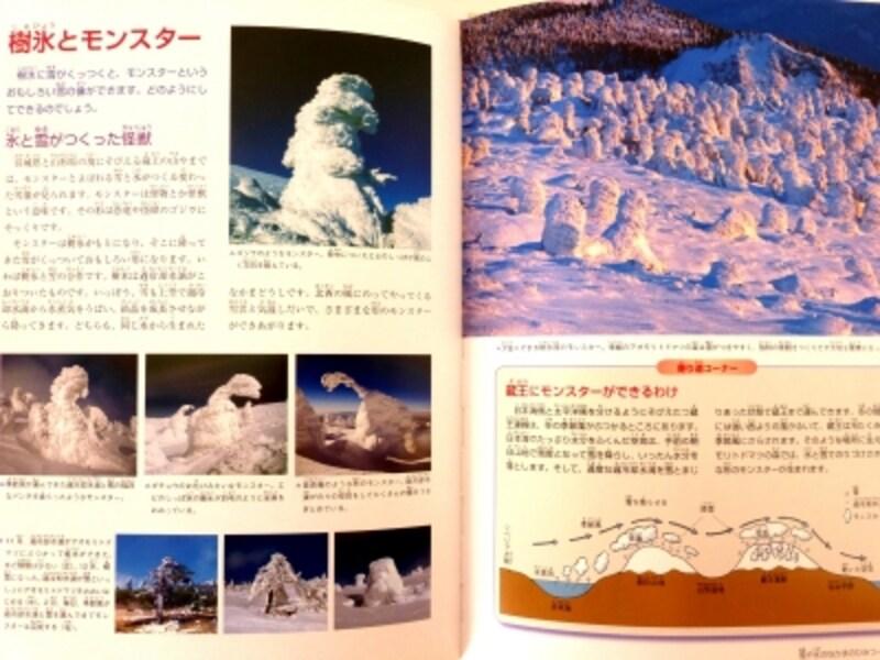 樹氷とモンスターの写真