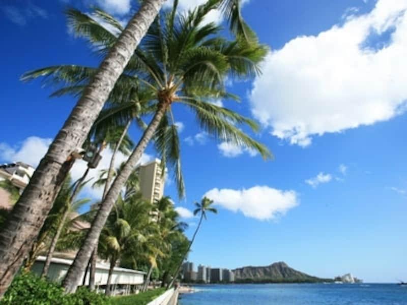 年間を通して温暖なハワイも、5~9月の夏と10~4月の冬の2つの季節に大きく分けられる