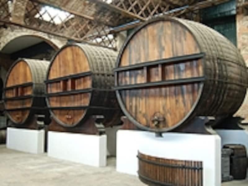 ワイナリー見学ではワイナリーの設備からワインまで詳しく知ることができる