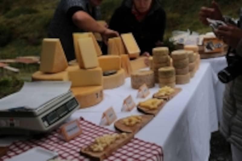 様々なチーズ選び