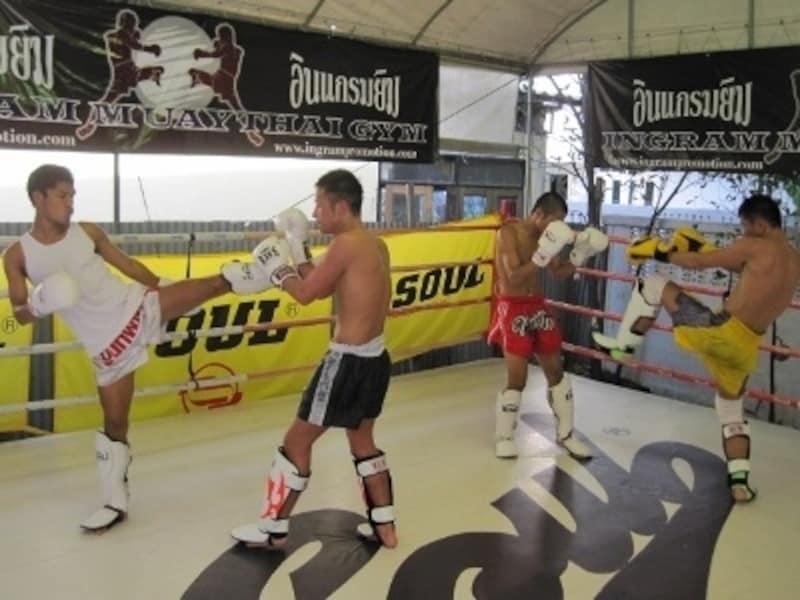 最初は不安かもしれないが、タイ人コーチたちが優しく教えてくれるので興味があれば思い切って練習に参加してみよう