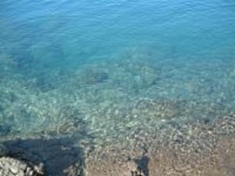 田沢湖(2)/湖岸からでも水の青さがわかります