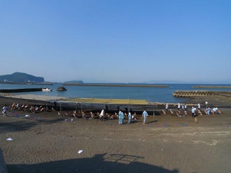 指宿温泉の名物「天然砂蒸し風呂」は温泉蒸気が出る砂浜につかる