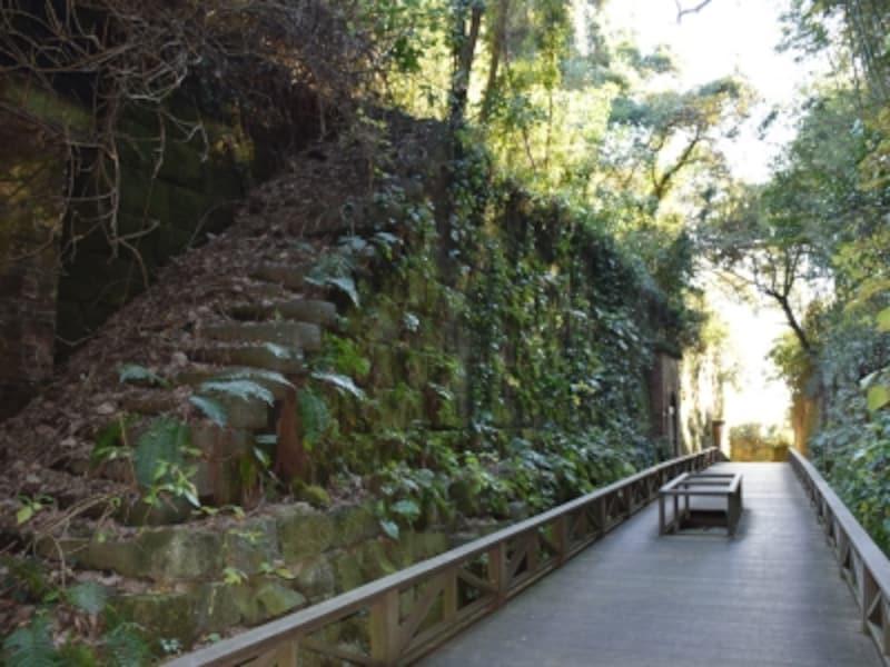「猿島」の自然と人工がおりなす造形美