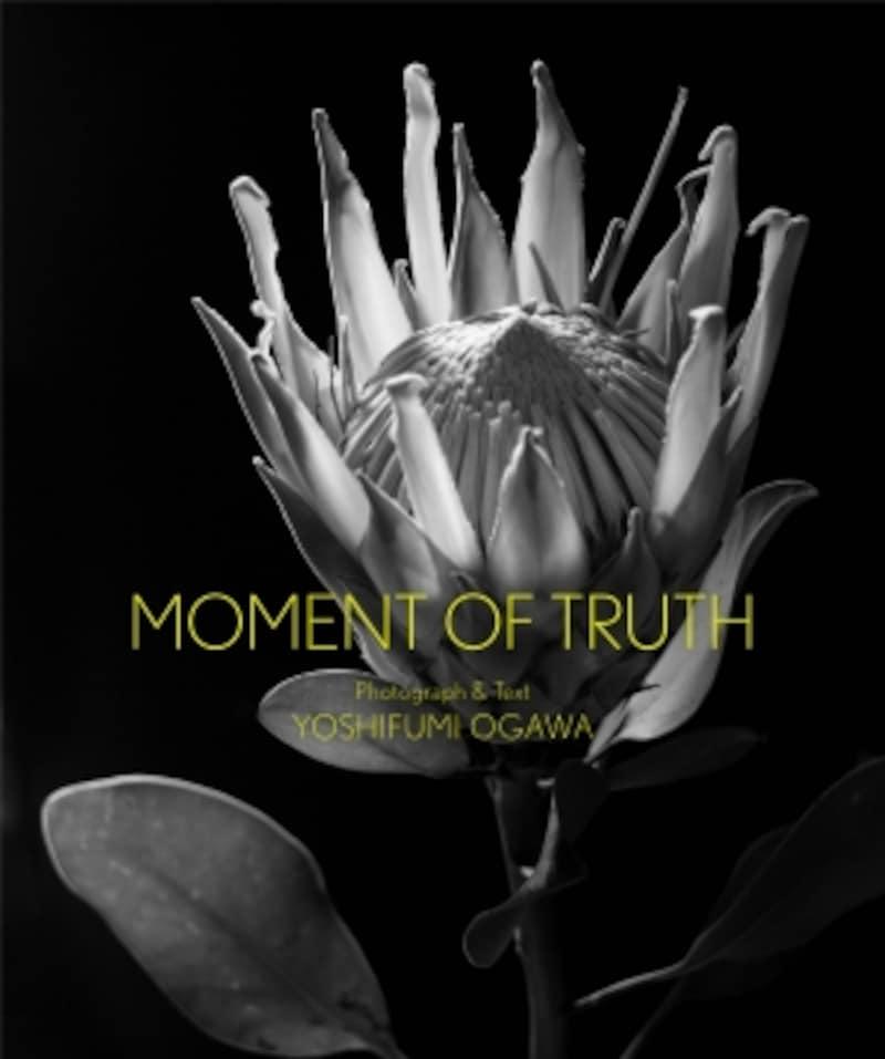 写真集『MOMENTOFTRUTH』の表紙。自然光だけで輝いた花を撮影している