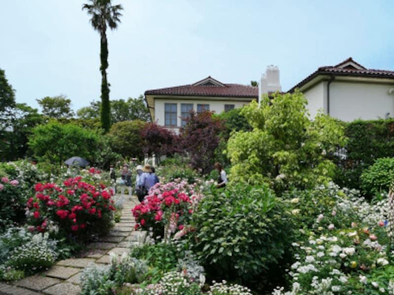 イギリス館裏庭はバラと多年草を組み合わせた「バラとカスケードの庭」(2021年5月14日撮影)