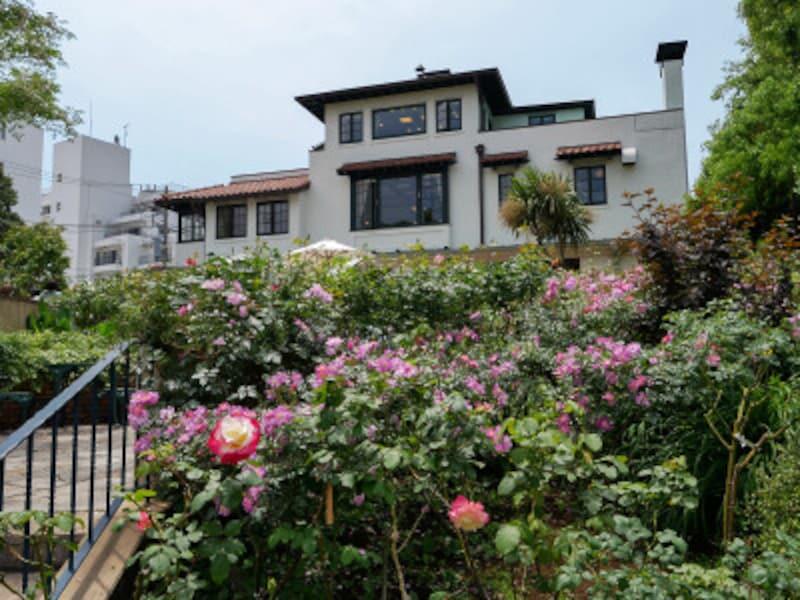 山手111番館裏庭は水路が設けられた起伏のあるガーデン(2021年5月14日撮影)