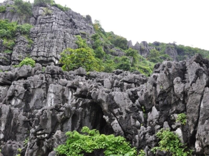 カルストの岩肌