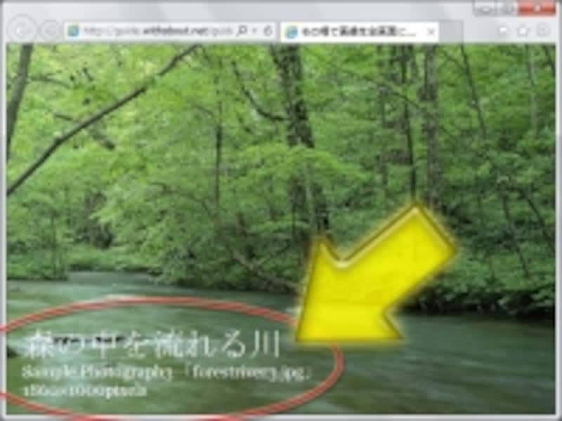 全画面表示の画像には、上からキャプションを重ねて表示できる