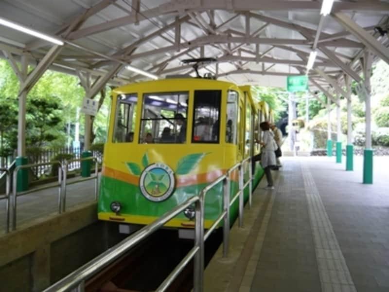 傾斜31度18分という急勾配を登るケーブルカー。驚いているうちに高尾山駅に到着してしまいます