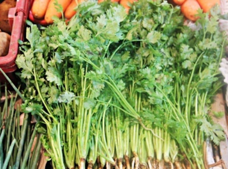 市場で売られている新鮮な香菜