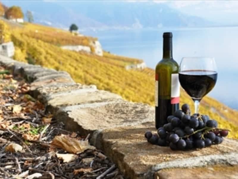 スイスワインのイメージ