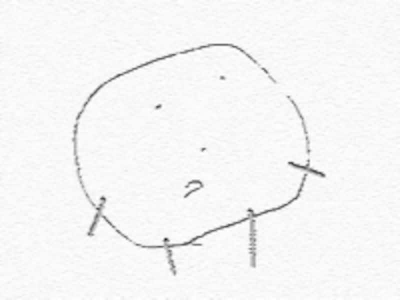 2歳頃頭から手足が生える「頭足人」を描くようになる