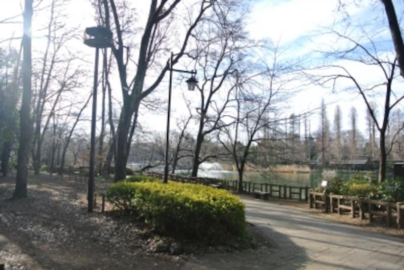 都立井の頭恩賜公園