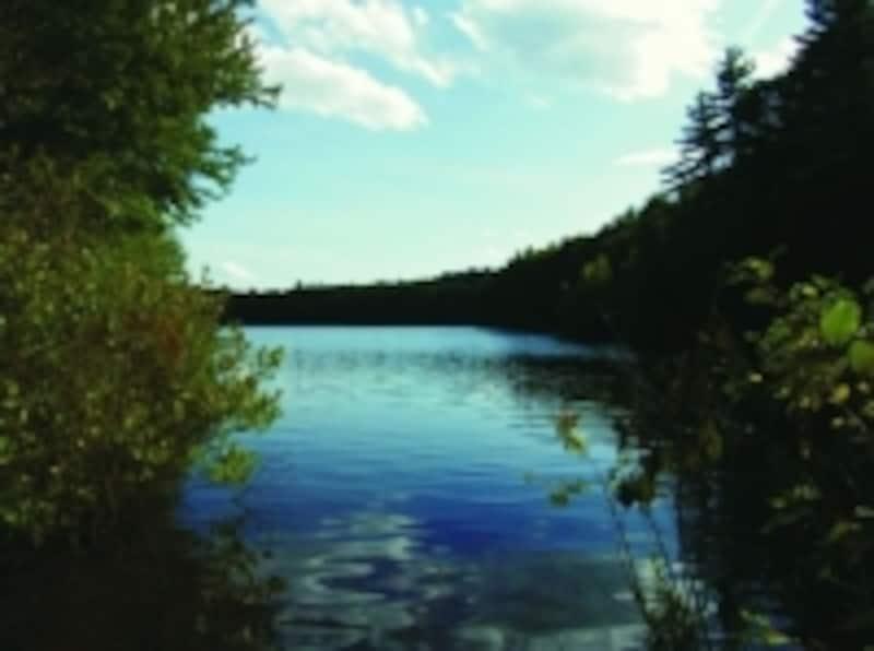コンコードのウォルデン湖