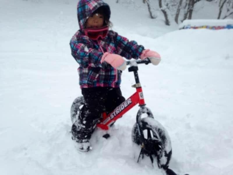 「スノーストライダー」など、楽しいアクティビティが盛りだくさん♪