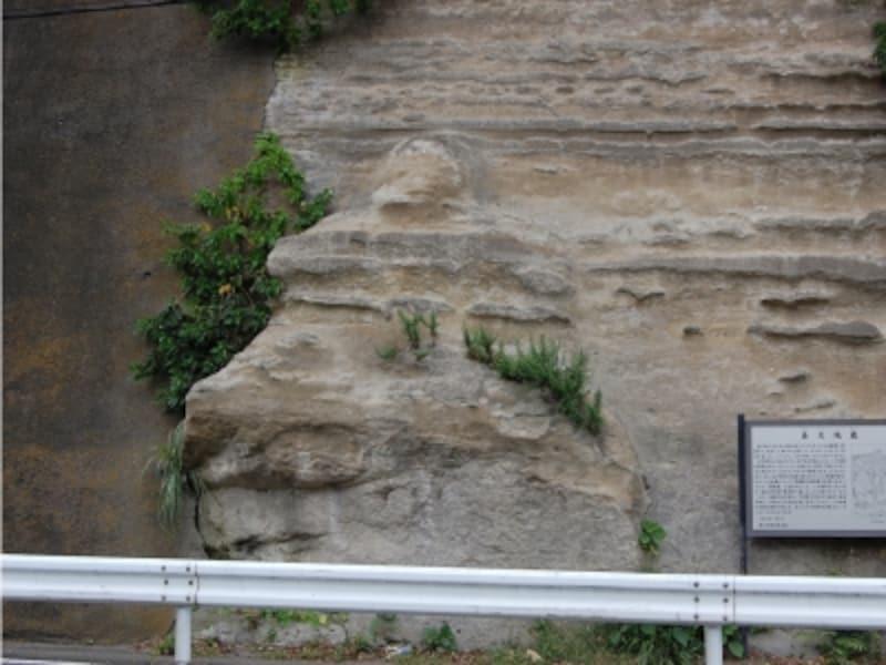 「鼻欠地蔵」と呼ばれる大きな磨崖仏