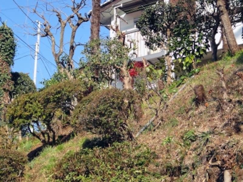 傾斜地を含む一戸建て住宅の敷地