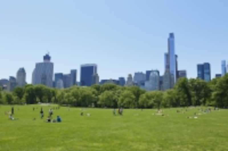 都市と公園
