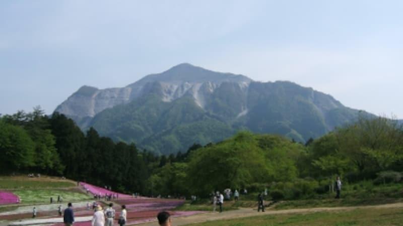 羊山公園の南側で日々山容を変える武甲山