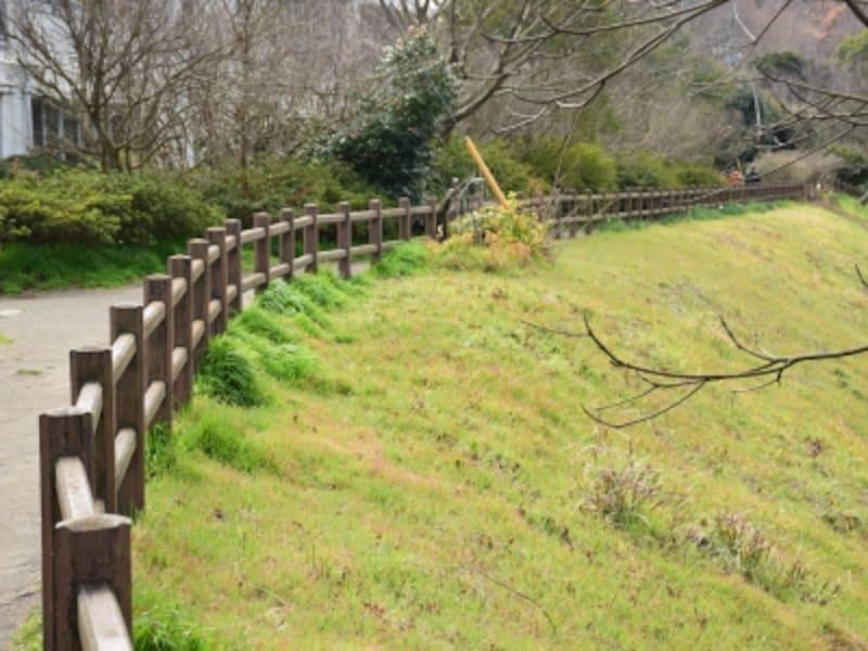 木の柵に沿って進みましょう