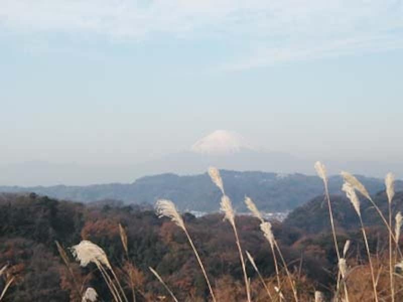 「関東の富士見百選」にも選ばれているビューポイント