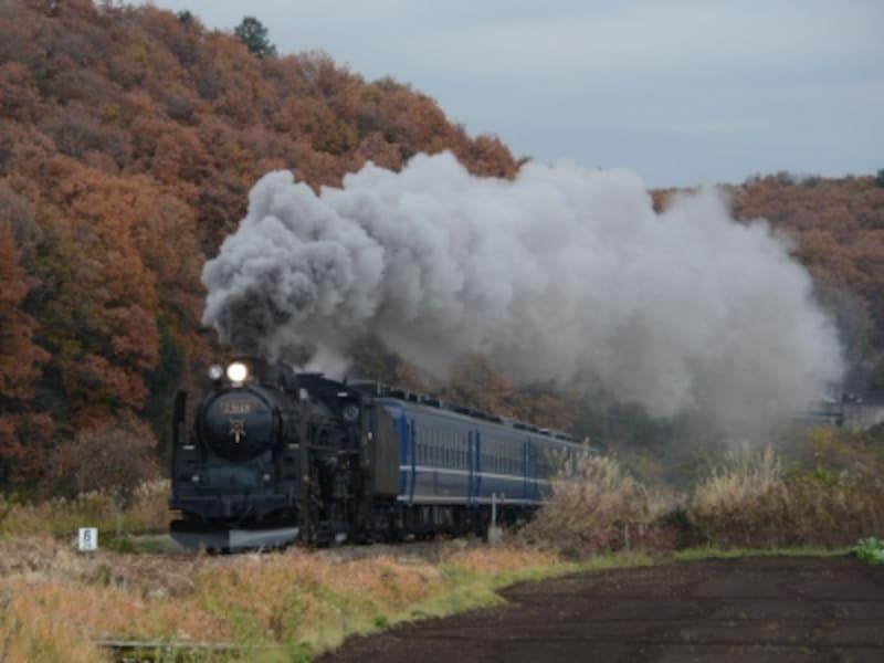 蒸気機関車C61形
